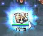 子羊オーラ